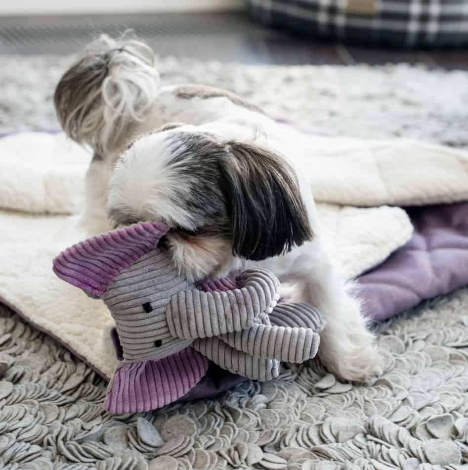 hondenspeelgoed dumbo grijs