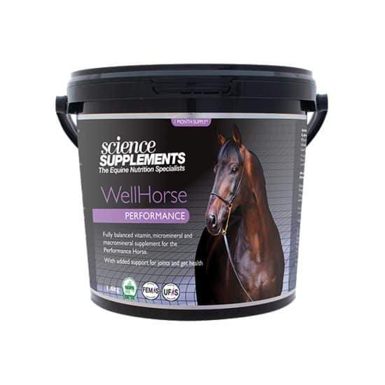 WellHorse Performance 1.4kg Horse feed balancer