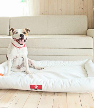 orthopedische hondenmatten