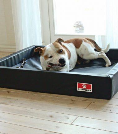 orthopedische hondenmand wit